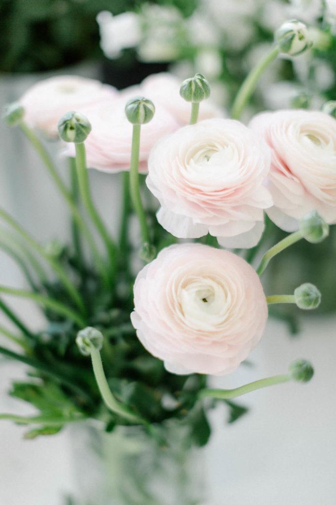 Kwiaty na ślub zimą, jaskry