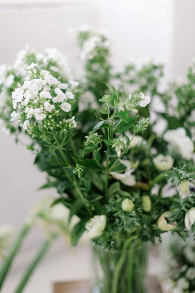 Białe kwiaty, floksy