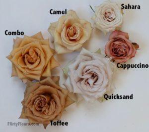 porady florystki, konferencja florystyczna flower stories