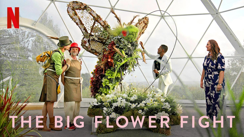 recenzja big flower fight, wojna kwiatów netflix