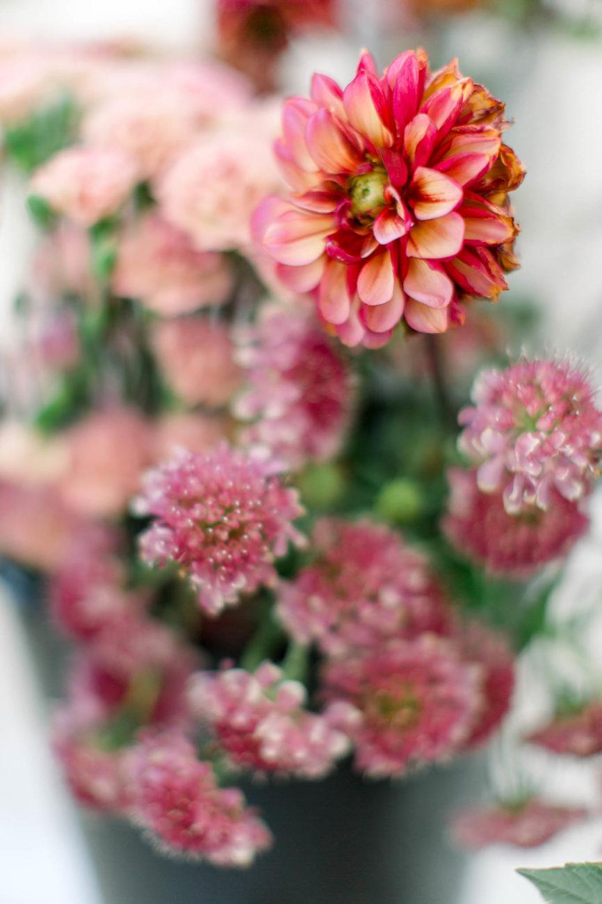 kondycjonowanie kwiatow cietych, przedłużanie trwałości kwiatów ciętych